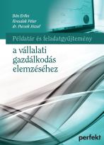 Példatár és feladatgyűjtemény a vállalati gazdálkodás elemzéséhez (PR-696-P/17)